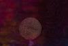 #22 Schupp-Outer Space closeup 300