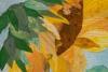 #13 Stenger-Sunflower closeup 300