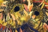 IBMasters, Four Cut Sunflowers, Janet Schupp,closeup, Juror's Mention #1, Member's Choice
