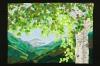 illumination-susan-van-vorhees-spring-break-full